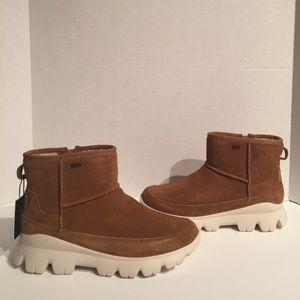 Ugg Women's Palomar Chestnut Zipper Sneaker